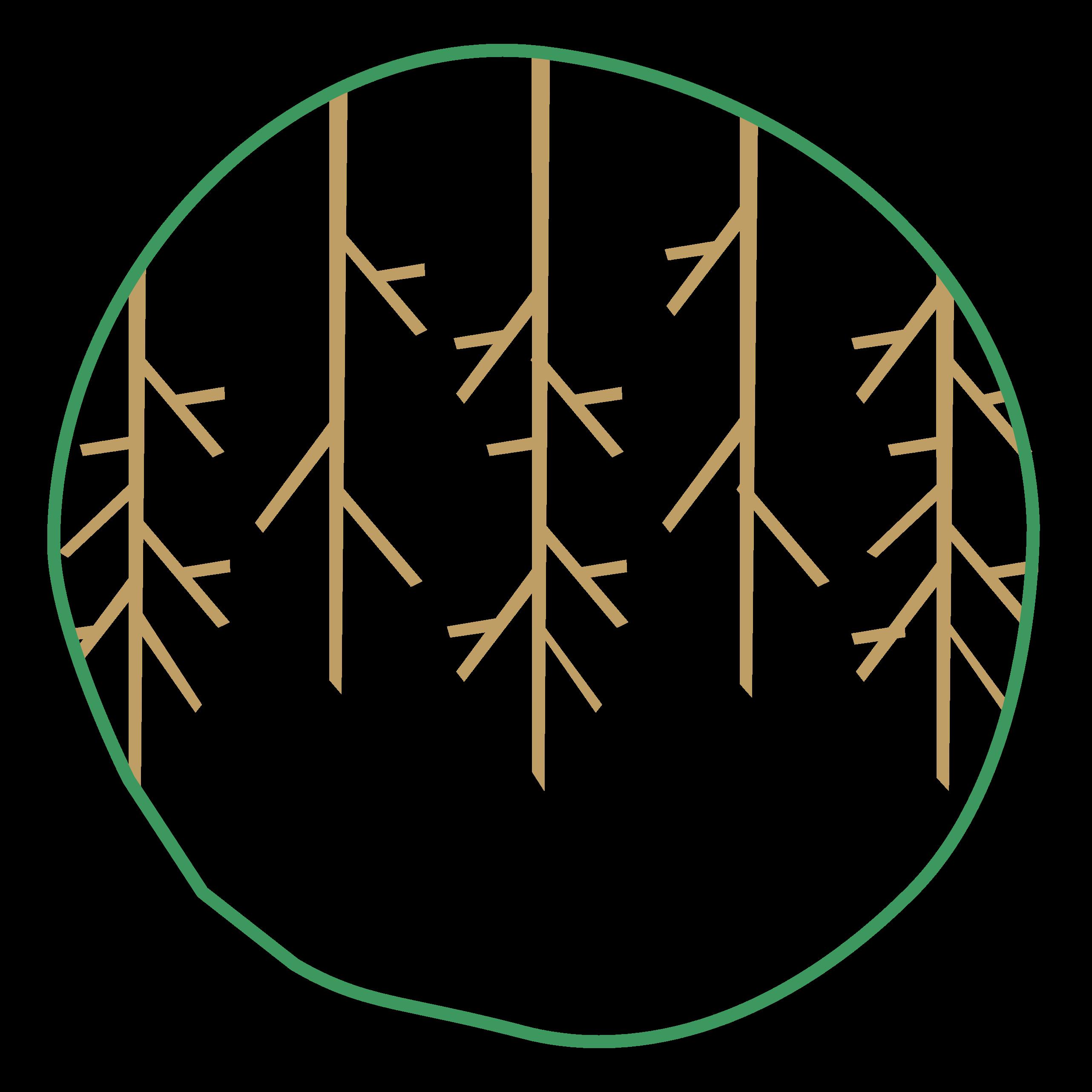 Klim Icon Wurzeln