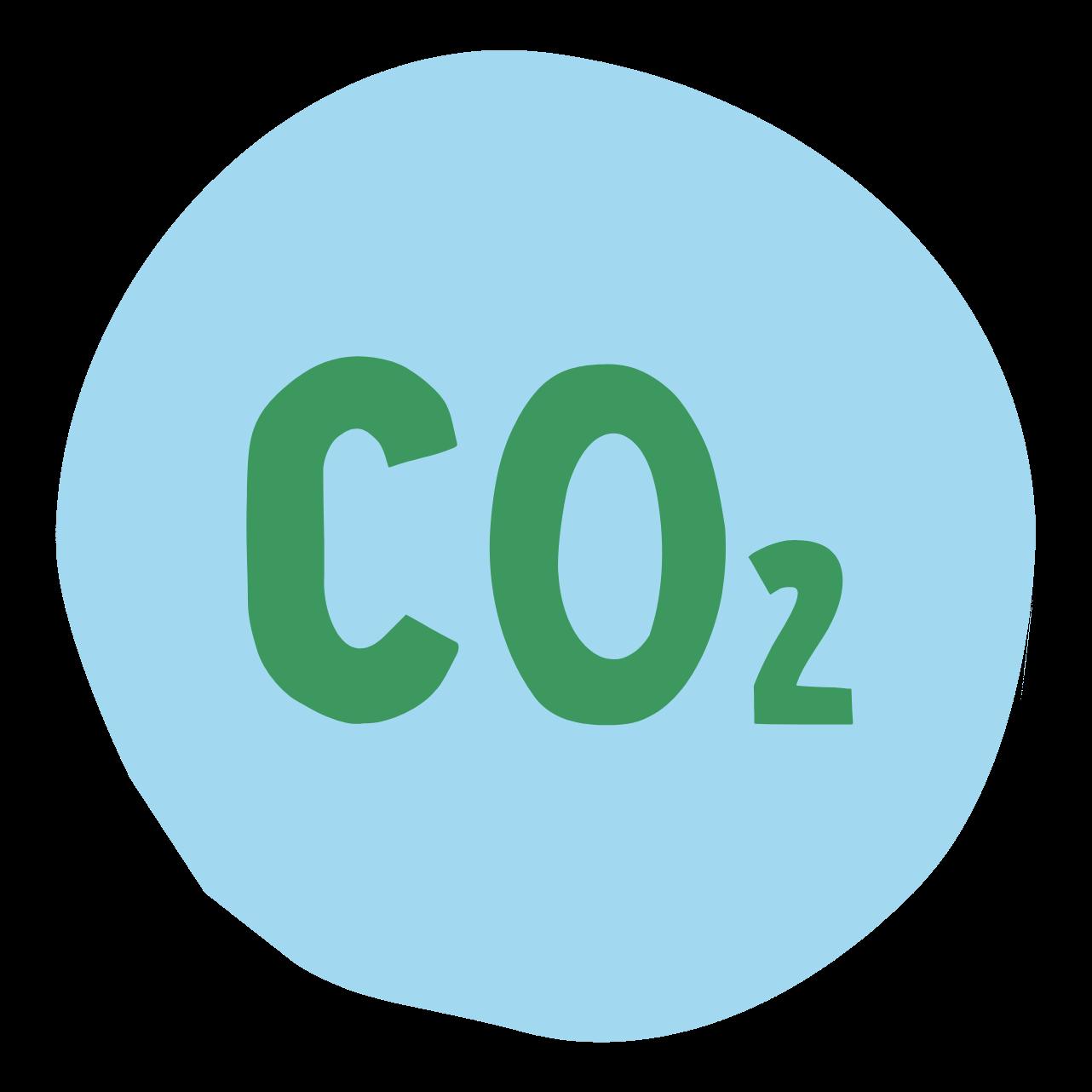 Klim Icon CO2 2