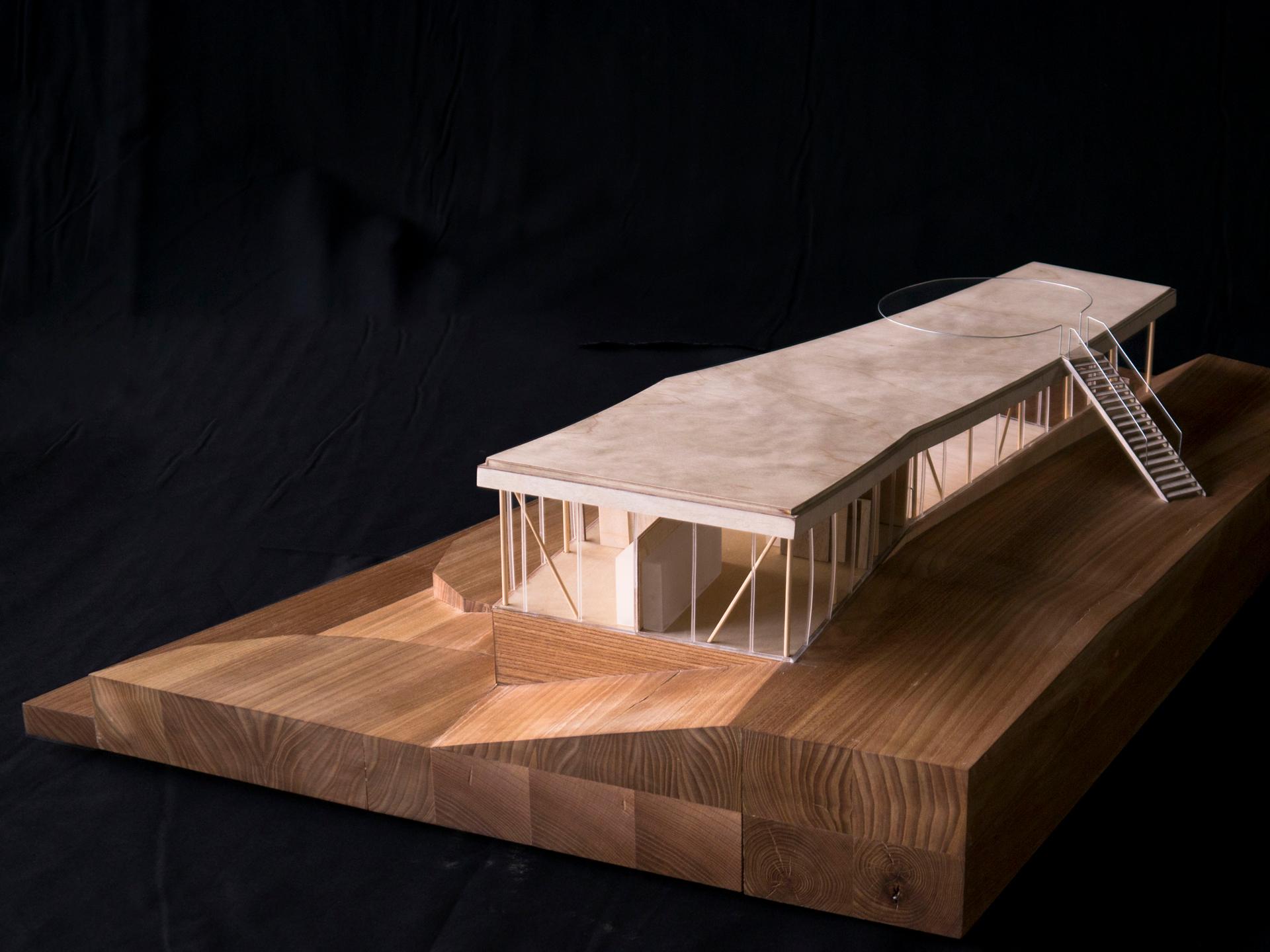 Holzmodell 1:50 aus Pappelsperrholz und massivem Ulmenholz