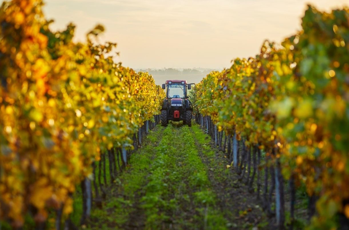 A tractor in the vineyard that is using biodiesel