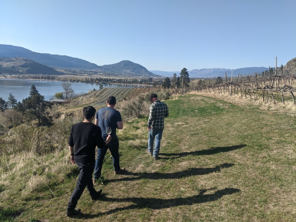BarrelWise team touring Pentâge estate vineyard after a day of work in the cellar