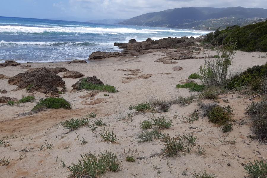 Oasi Mar Morto Palinuro