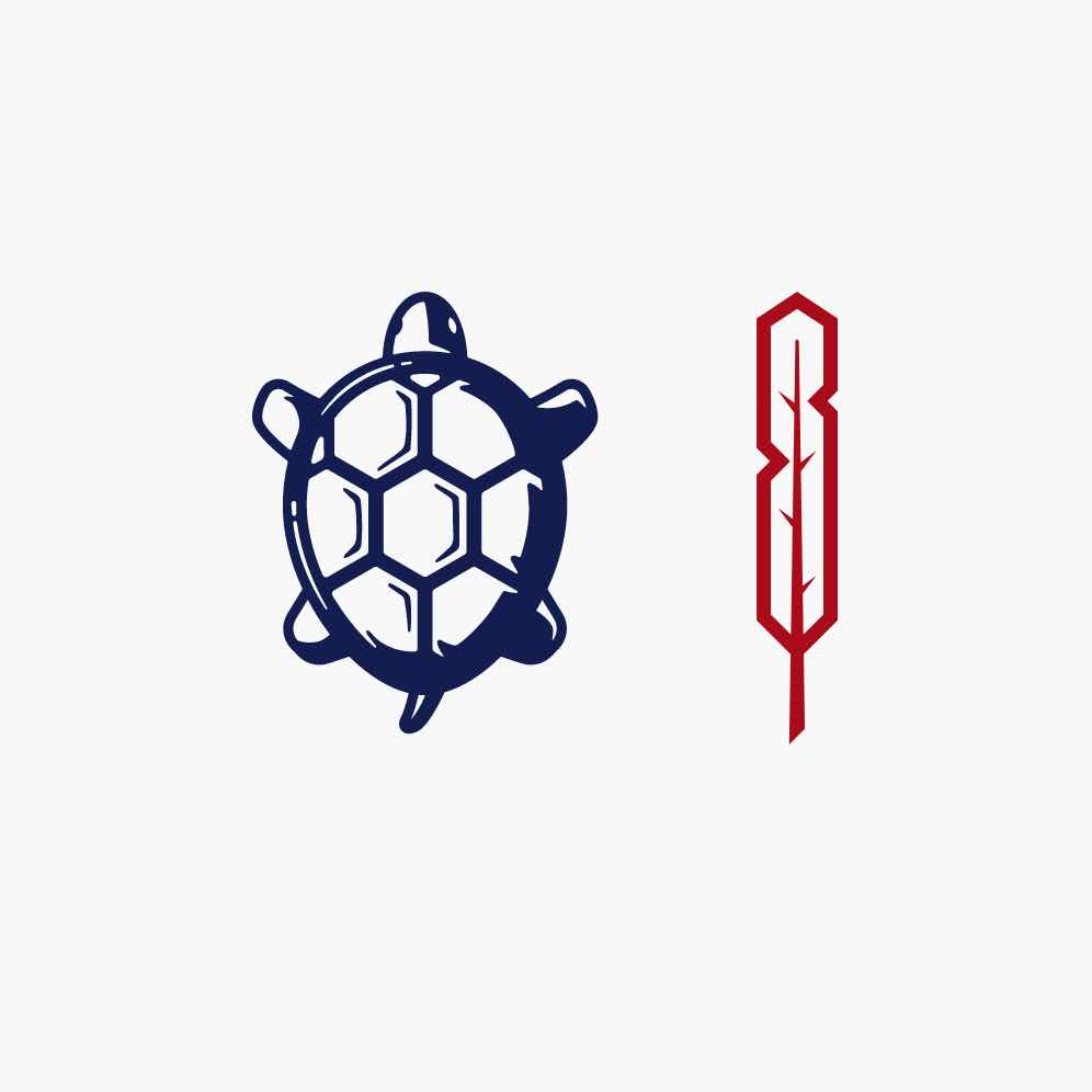 turtle and feather icon
