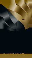 German Innovation Award Winner Logo