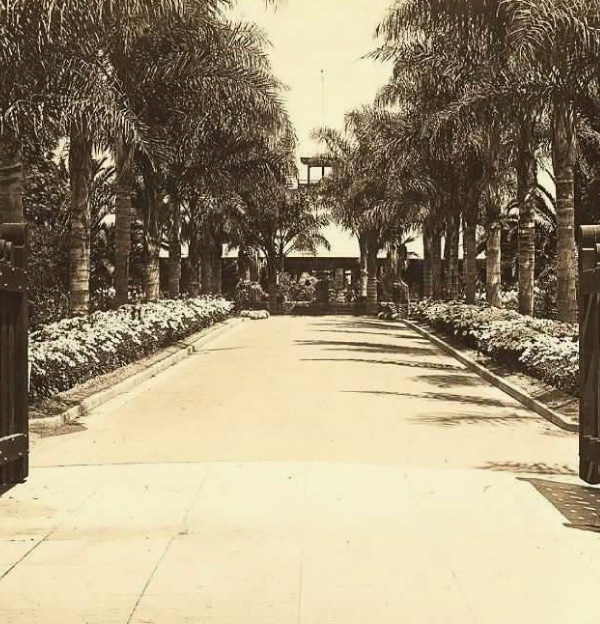 A old family image of the Main entrance to Mission Cliff Gardens