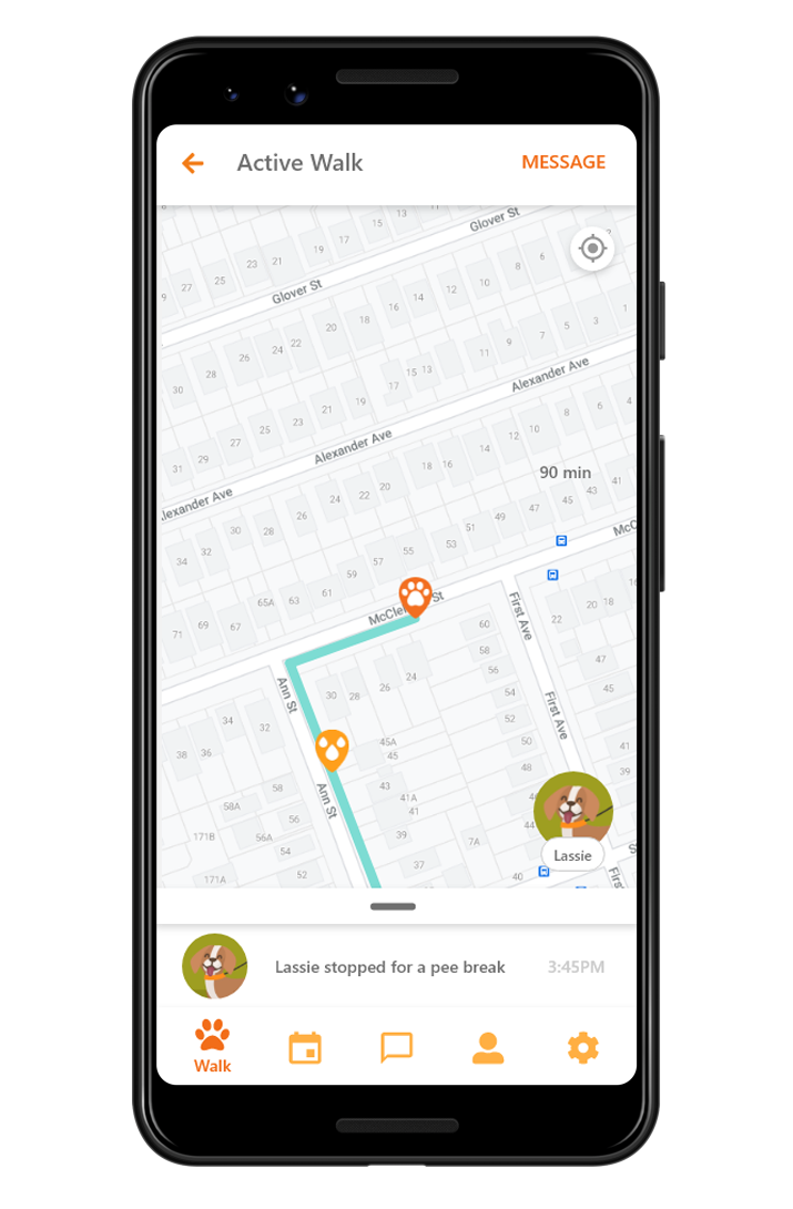 A demonstration screenshot of a active walk on the Dogg app.