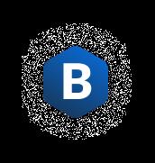 Bisner Icon Logo