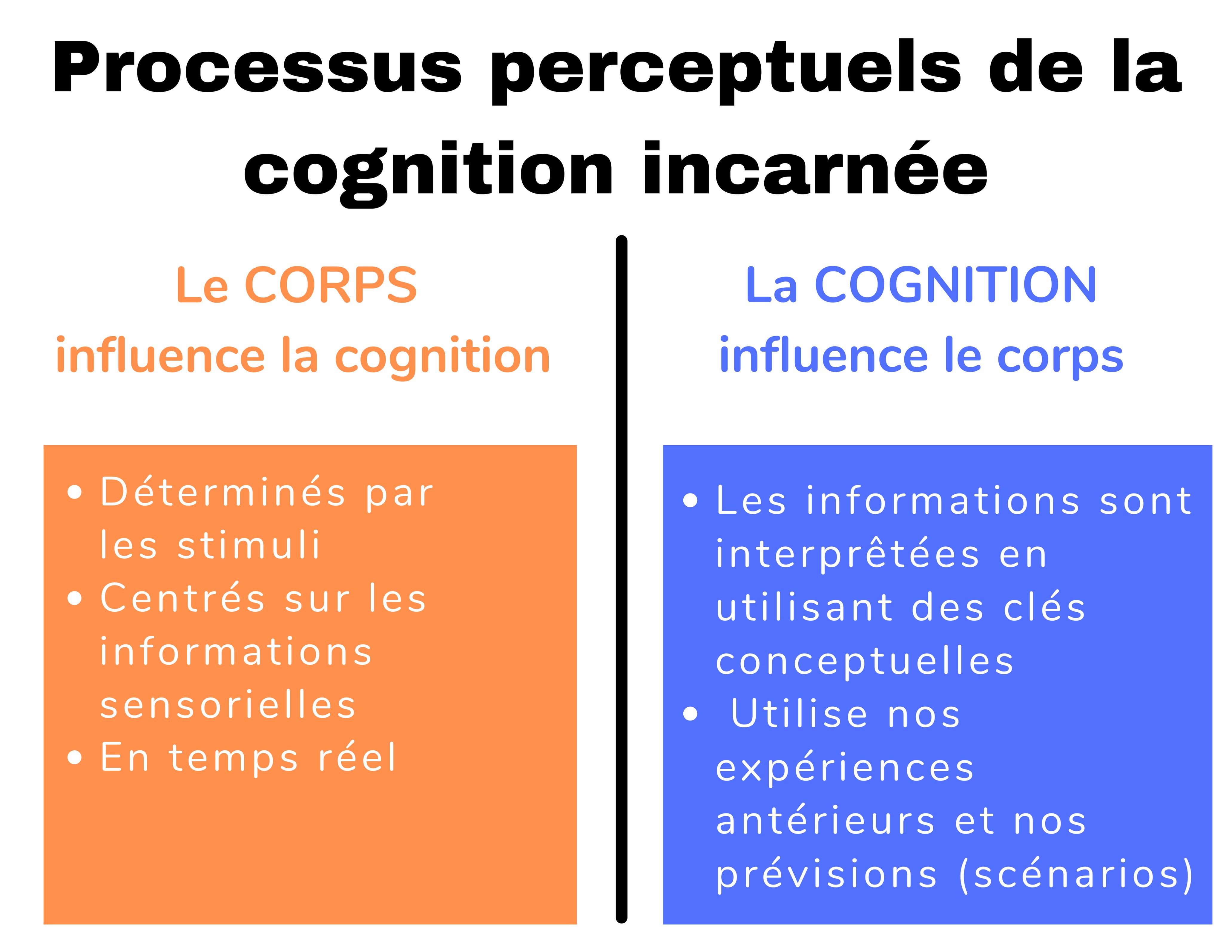 processus perceptuels de la cognition incarnée