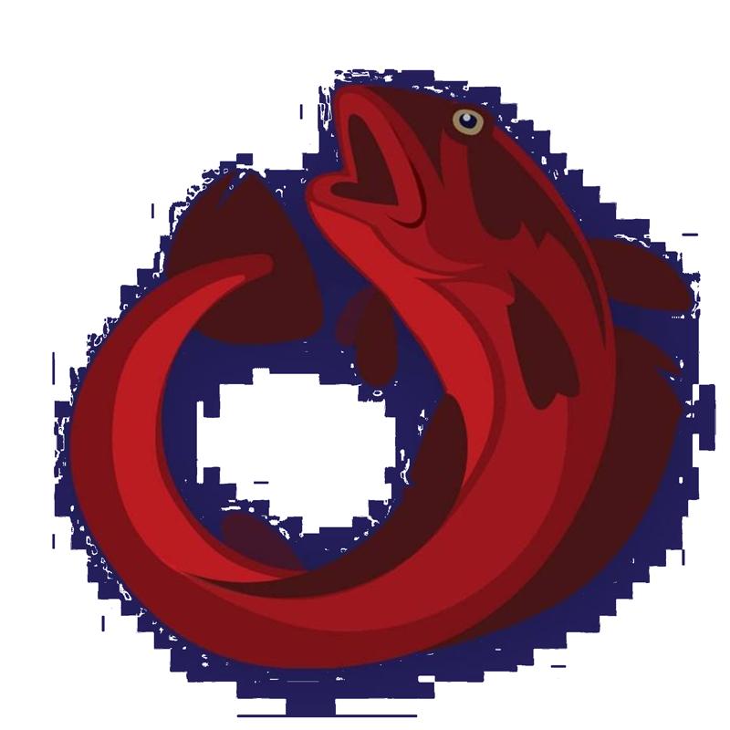 CODEI Logo