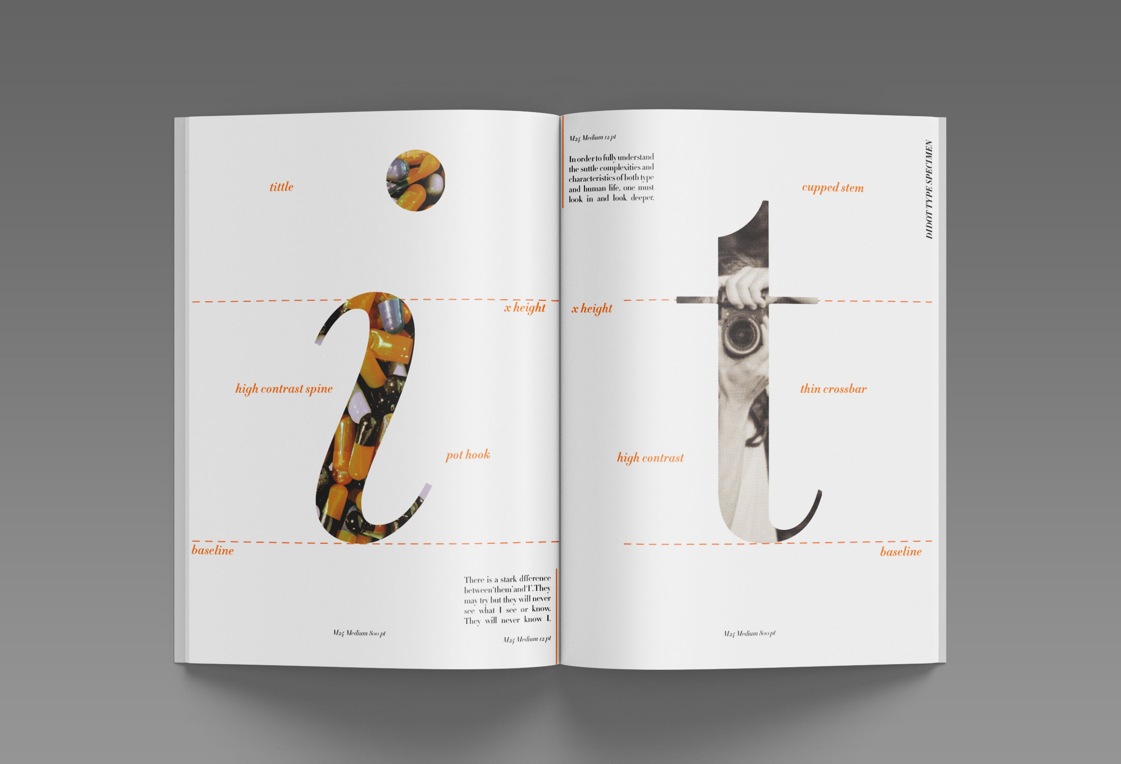 examination of specific letters from typeface
