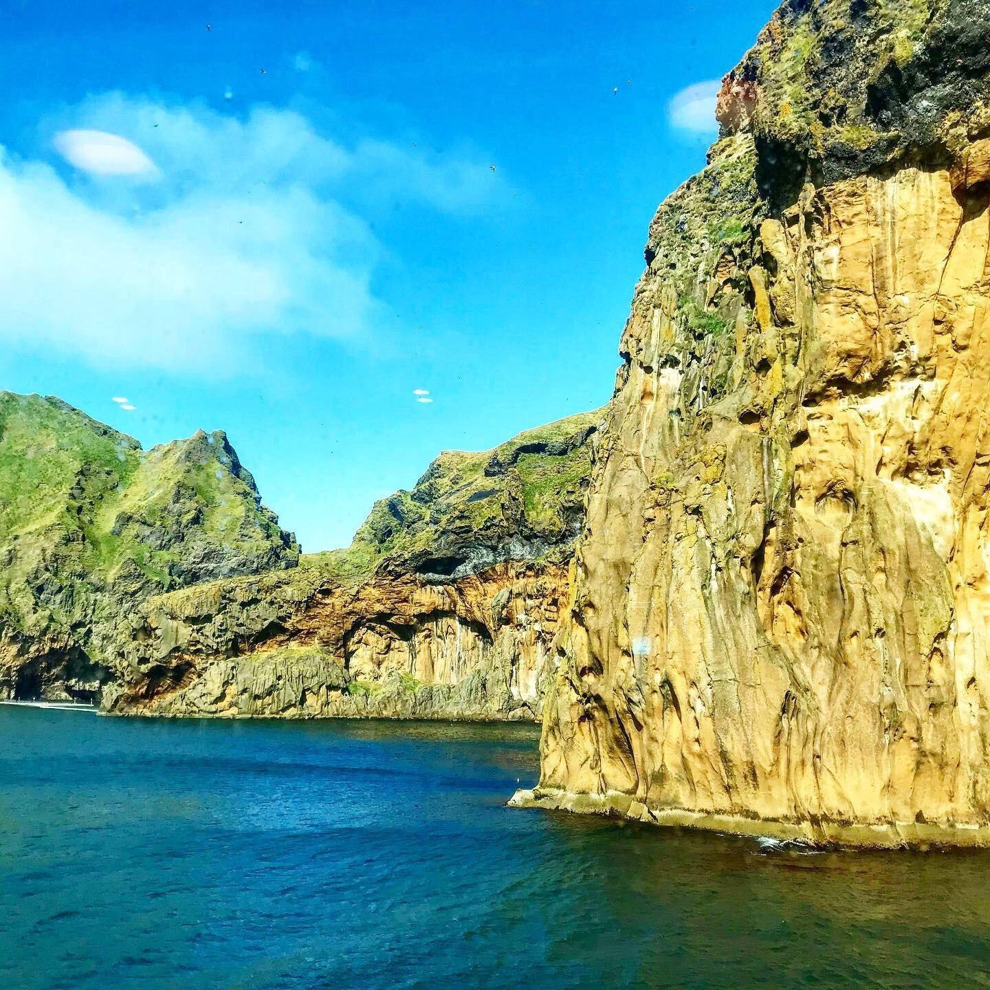 The verdant cliffs of The Westman Islands. Photo courtesy of the author.