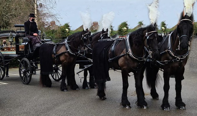 George John Funeral Directors Solihull Funeral Vehicles Horse & Carriage