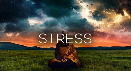 Onlinekurs Stress Master von Maxim Mankevich