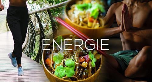 Onlinekurs Energie Master von Maxim Mankevich