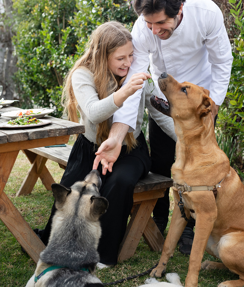 Klein Kitchen founders Leor and Laura Klein with their 2 dogs