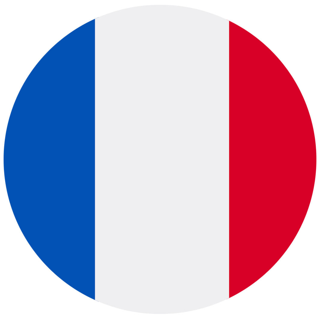 French flag that suppose a possible language switch in the page