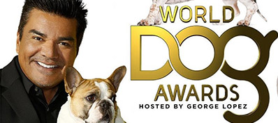 World Dog Awards CW - Extreme Dog Award
