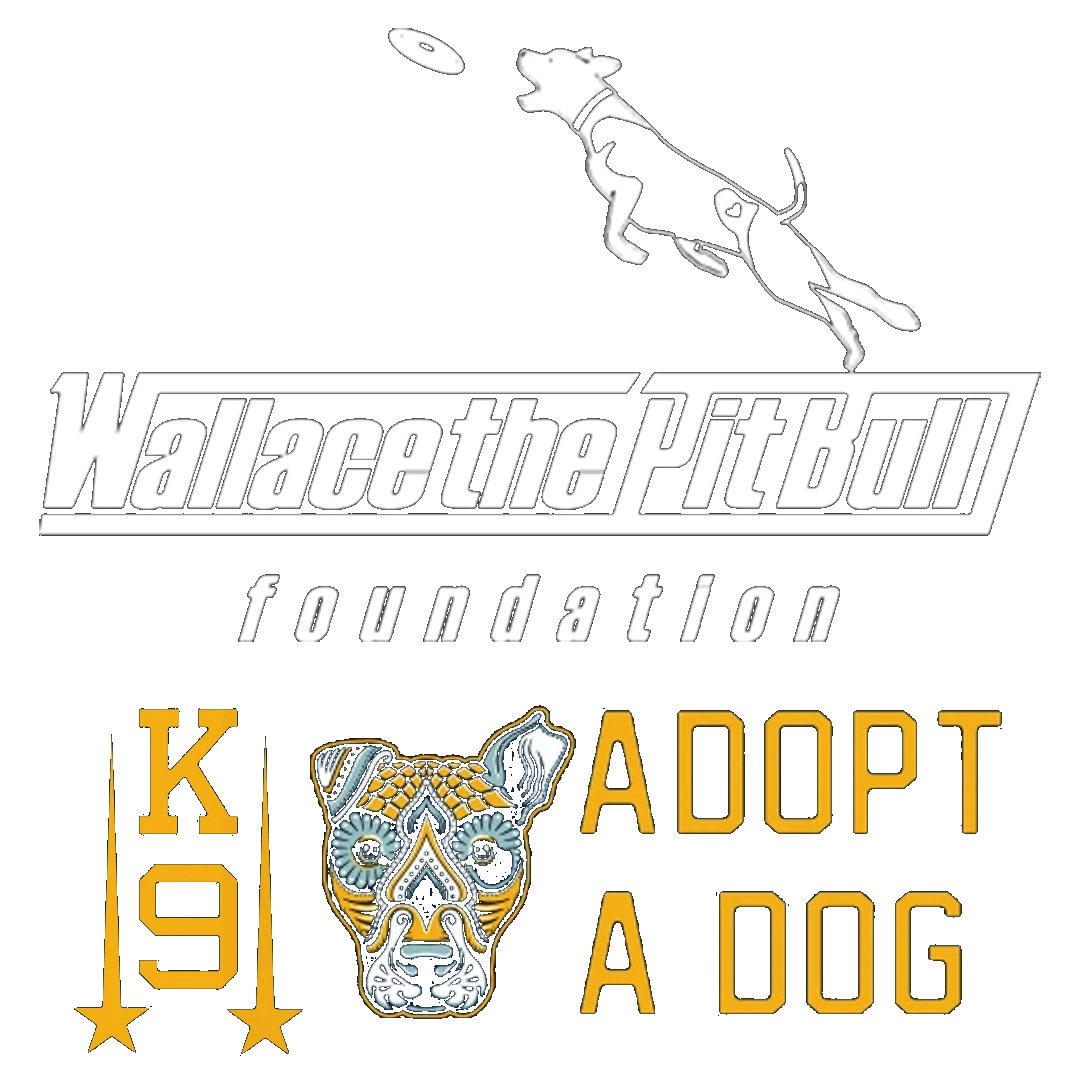 Wallace The Pit Bull Foundation