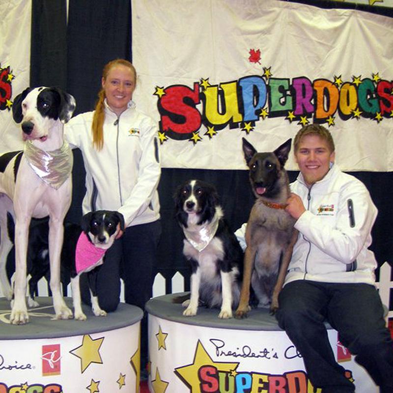 Official Superdogs website
