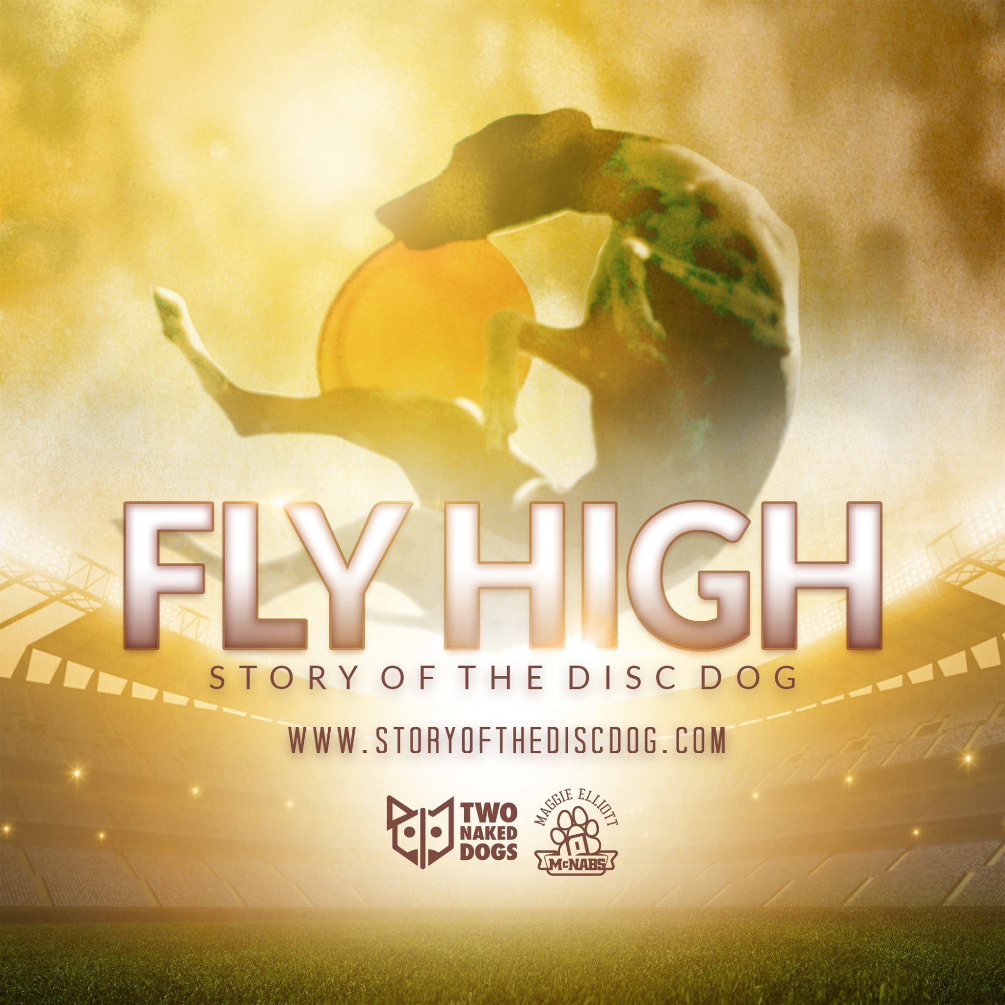 Fly High Story of the Disc Dog