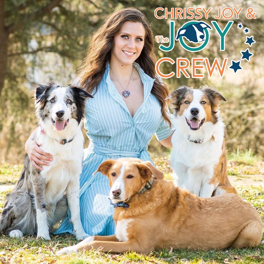 Celebrity Dog Trainer & National Stunt Dog Champion. Studio Canine Trainer & Performer. Friend.