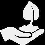 Ascend Health Group Establishment Fee