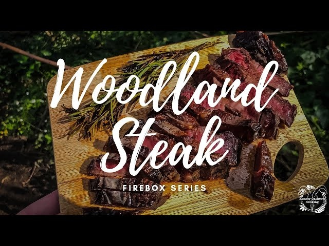 Cooking a steak outdoors on a firebox in the Woodland - ASMR - HGC