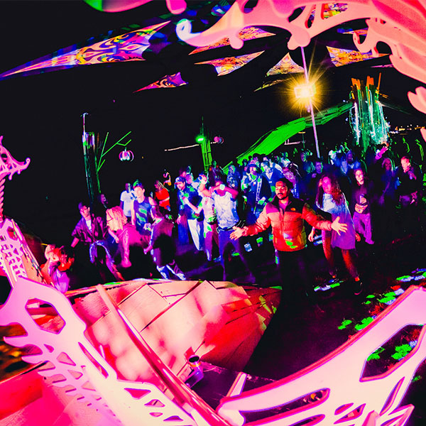 festival crowd dancing to dj
