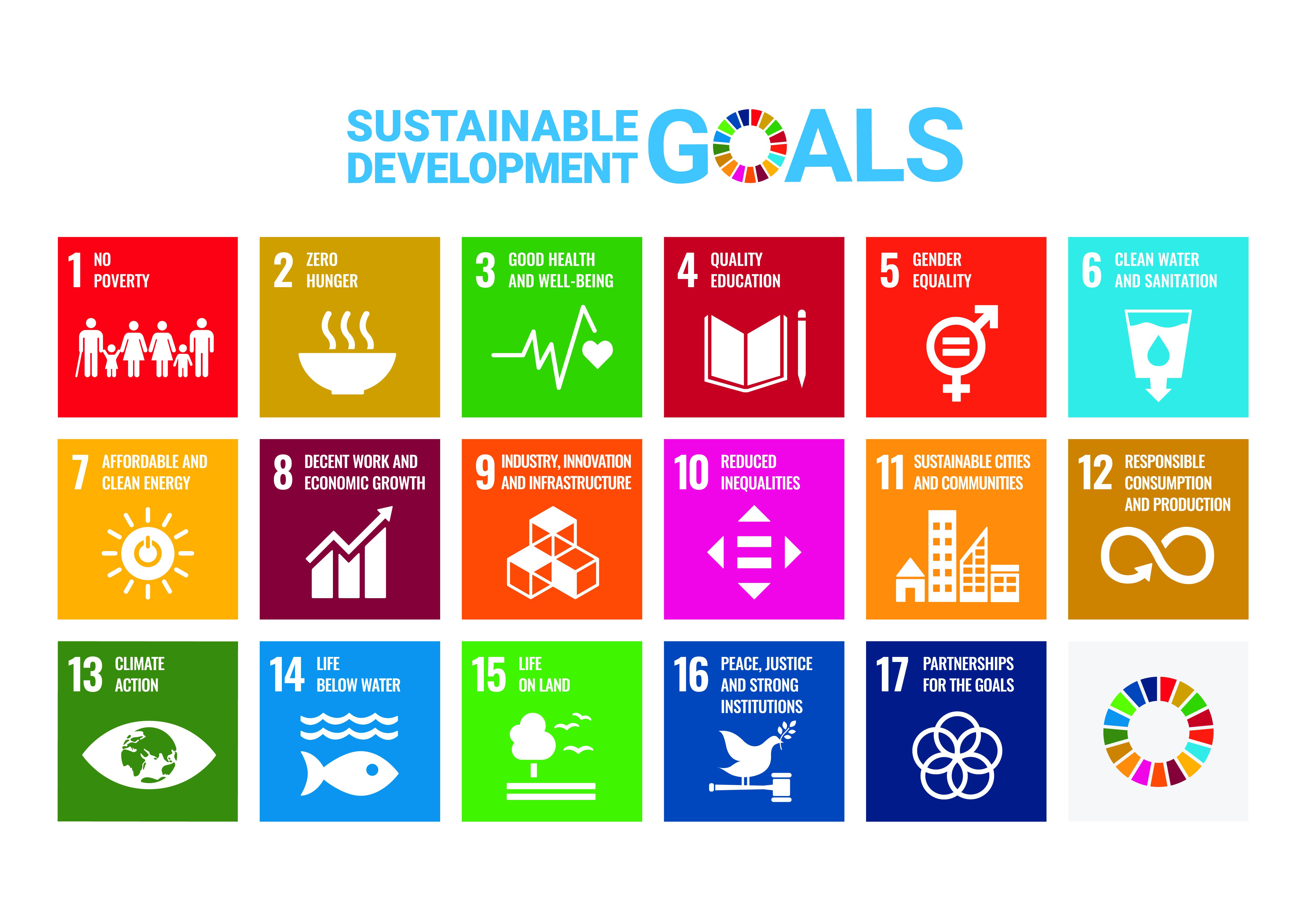 Icon of the UN Sustainable Development Goals SDGs