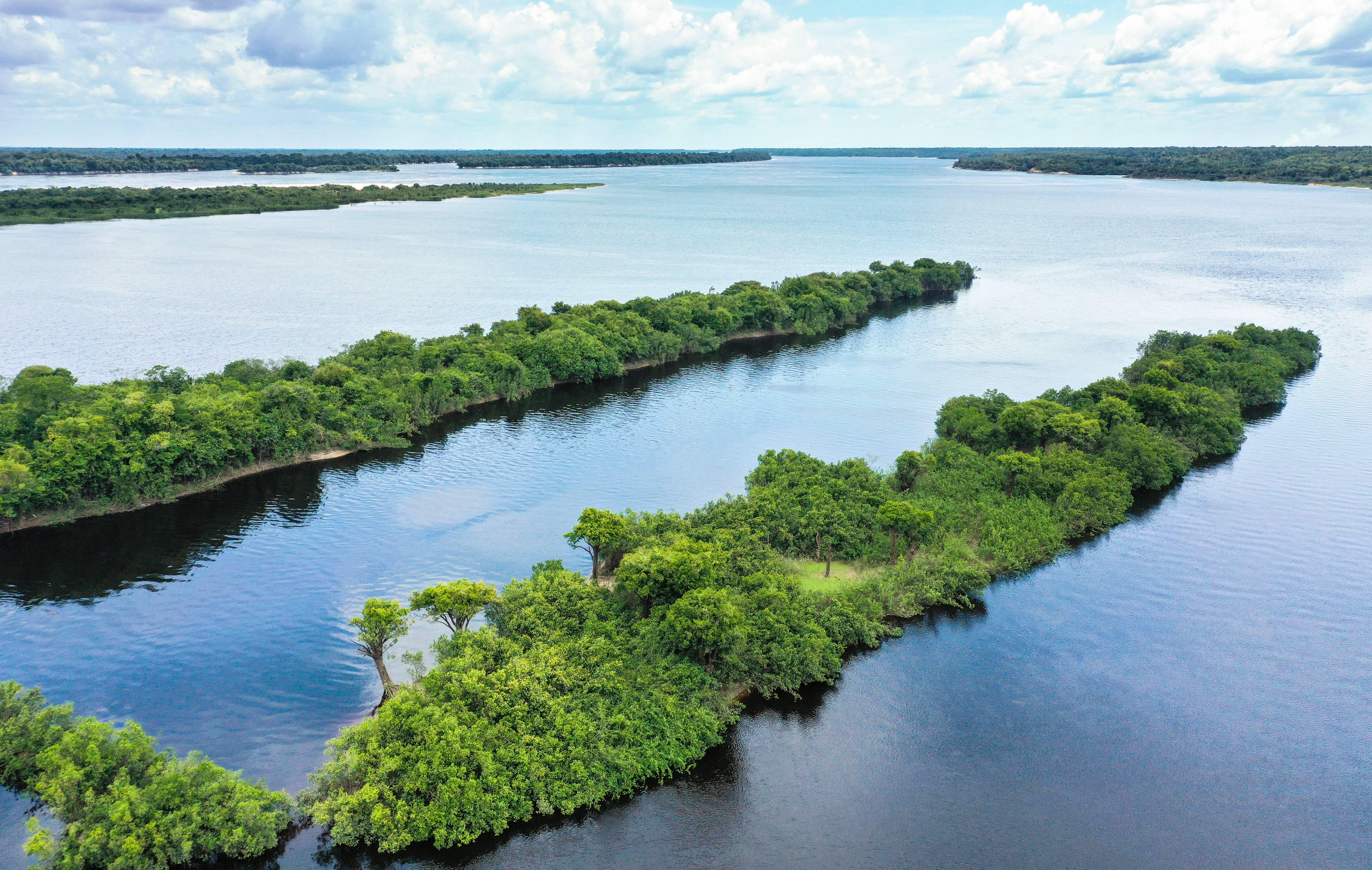 Rio Negro River in Amazon rainforest Brazil