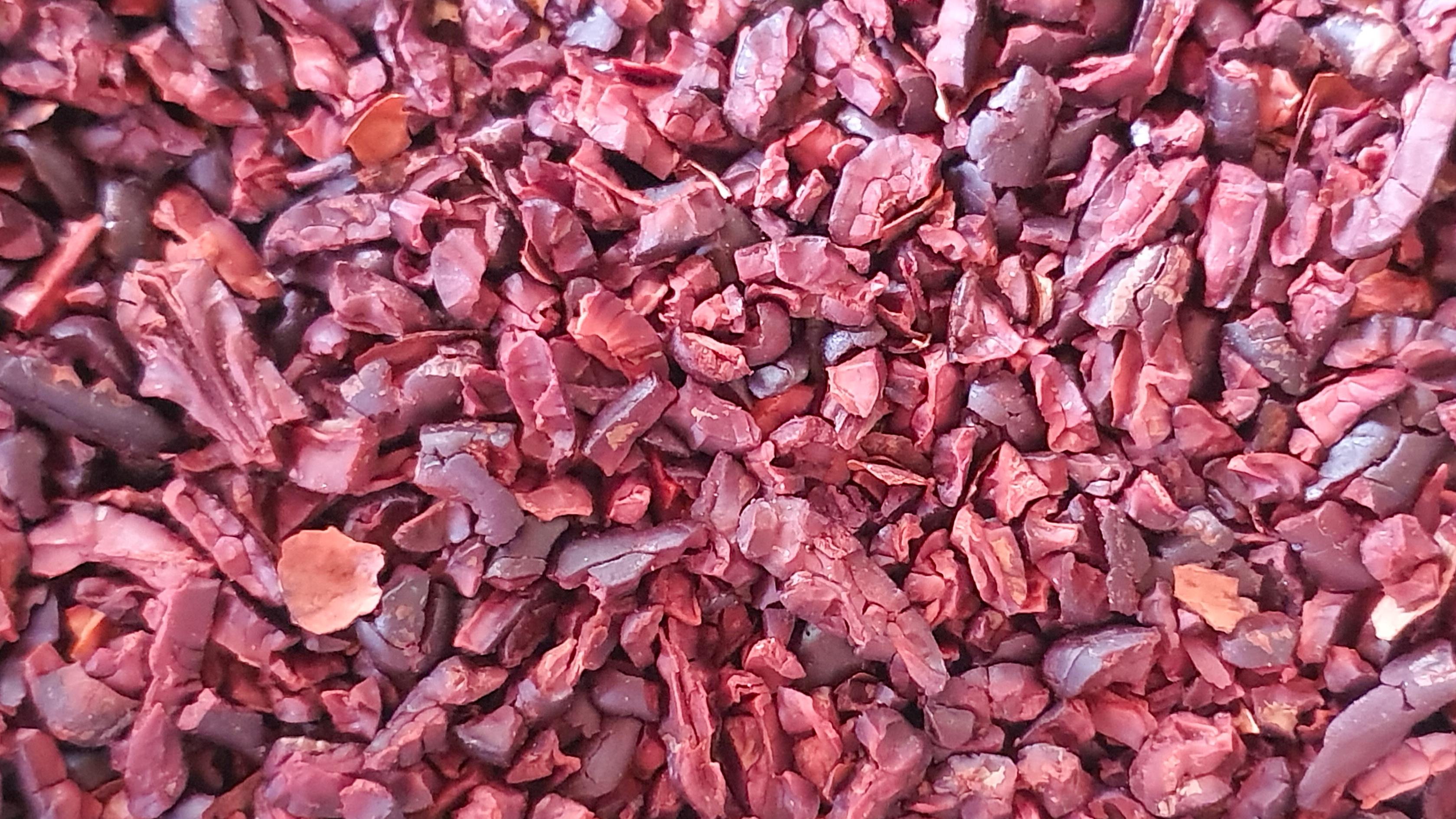 Raw dried cacao