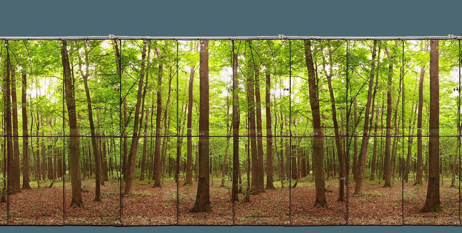 Environmental background