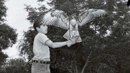 Chuck raised hawks too.