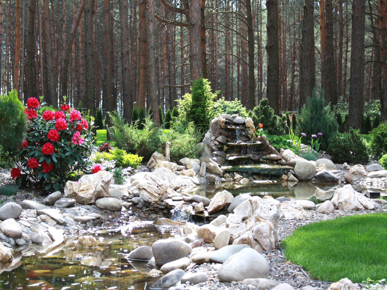 Водопад в саду дизайн