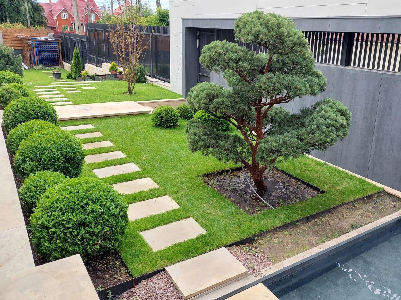 Ультрамодный Бонсай в саду