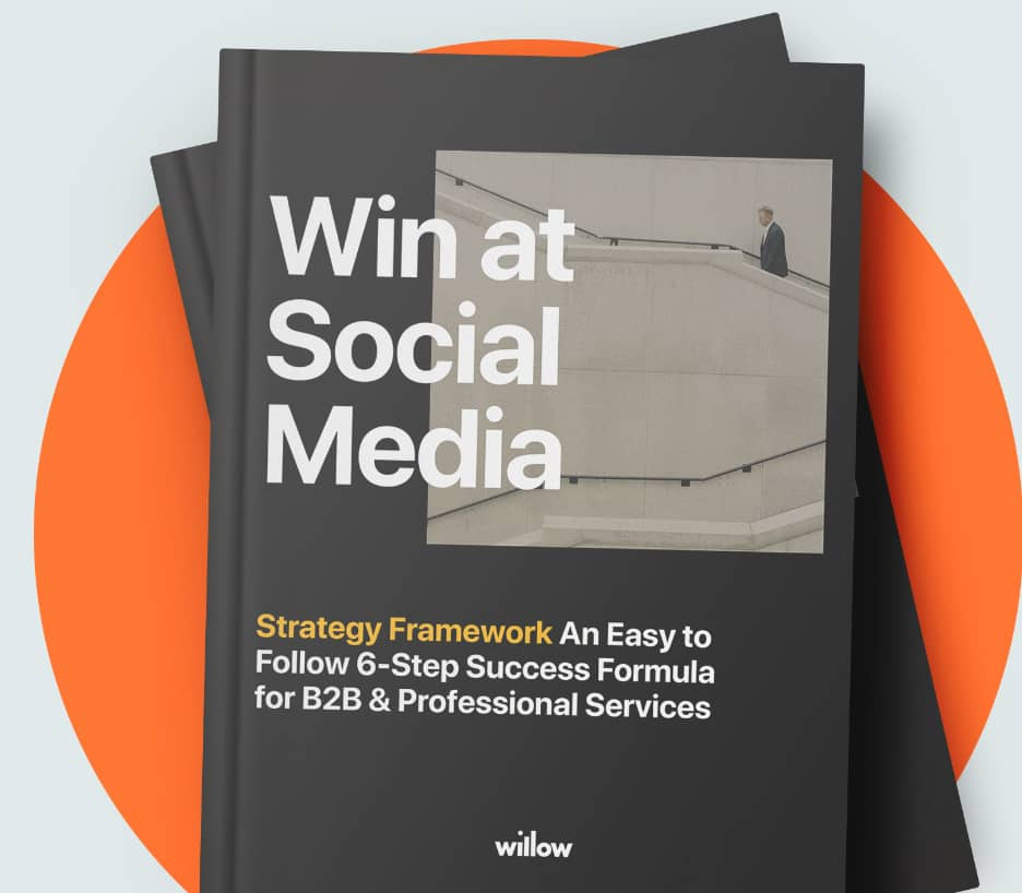 Willow Social Media Success Book