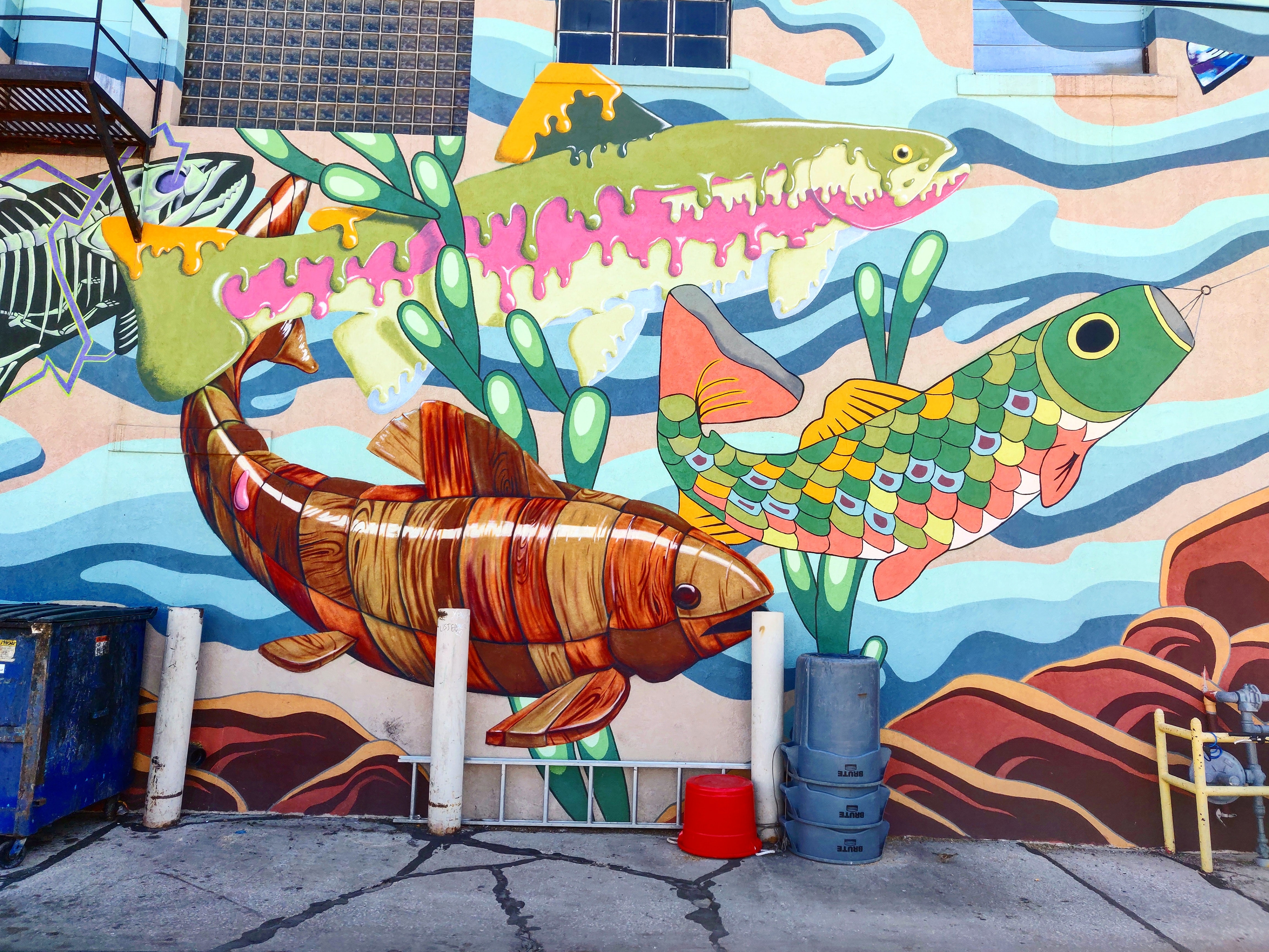 Vibrant Laramie Wyoming downtown art walk