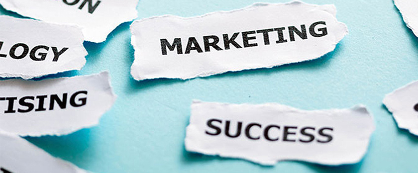 Our Advice On Successful Marketing Material