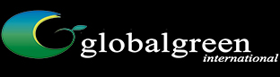 GGI Energy Logo