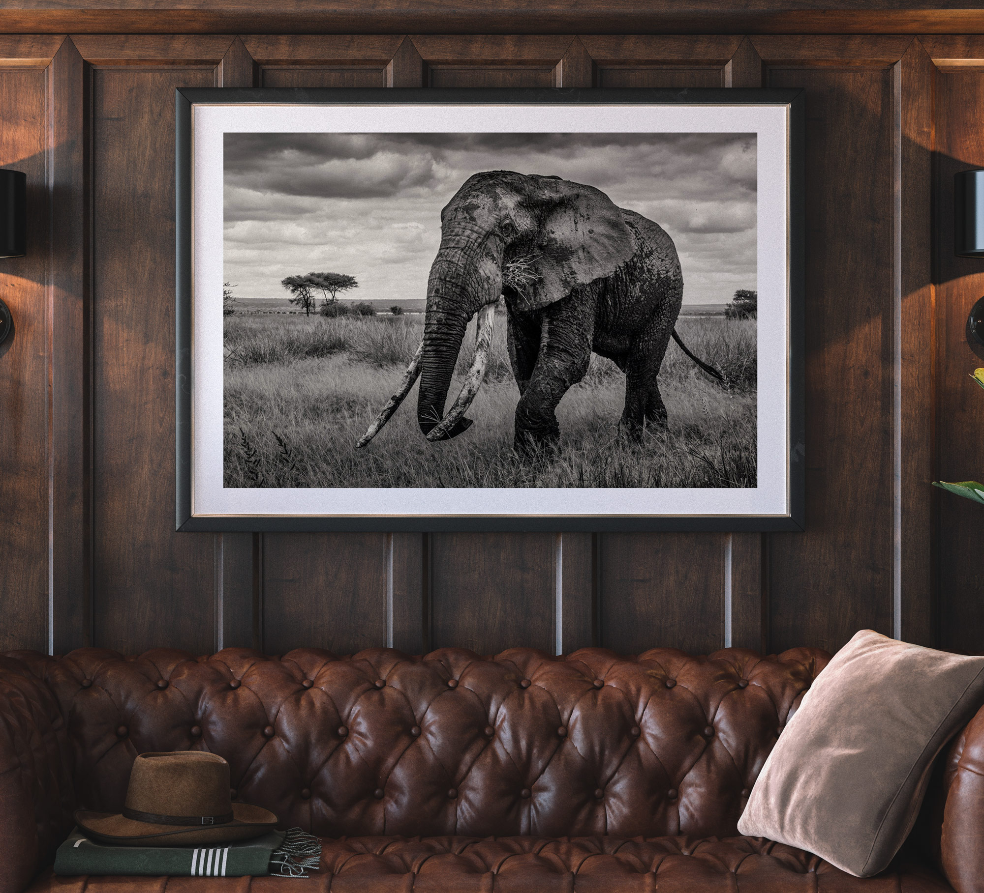 riccardo tosi photograph of elephant bull in black and white