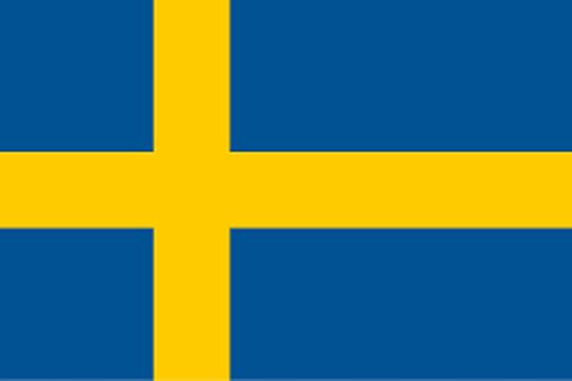 Bandera Suecia idiomas castillo construction