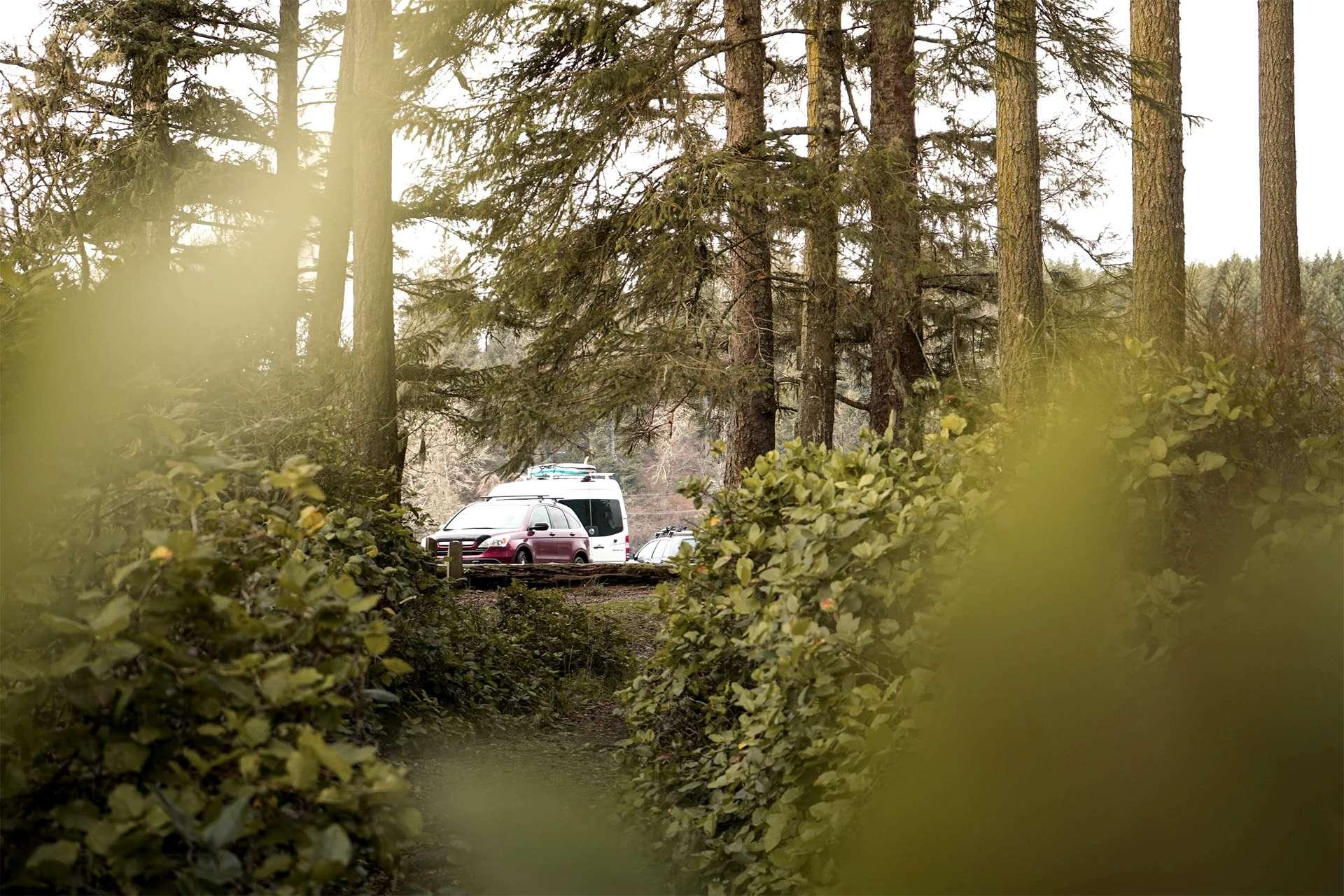 Bild von parkenden Autos von Campern in einem Wald.