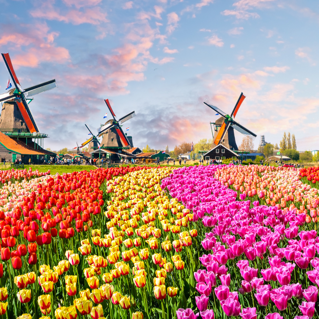 Die Niederlande haben weit mehr zu bieten als schöne Küstenabschnitte. Foto: Canva