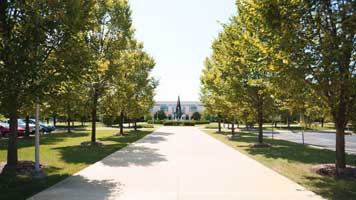 Local Community Colleges: 10 Benefits that Boost Your Advantage