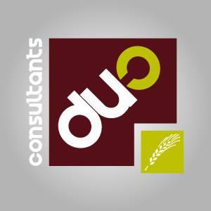 Logo Duo Consultants