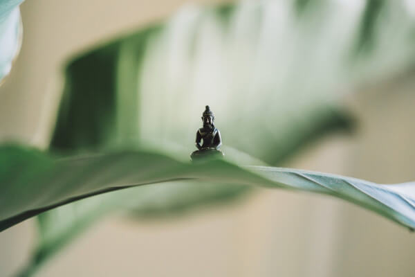 Lessons I Learned From 10 Days of Silence and Meditation