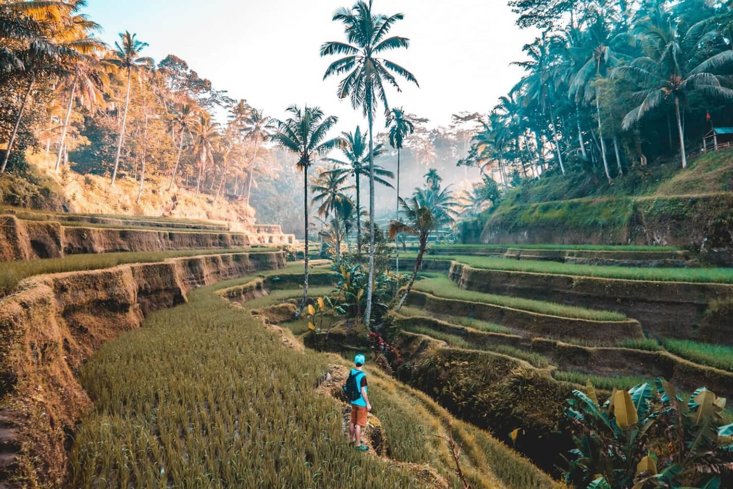 52 Best Digital Nomad Destinations to Go in 2021