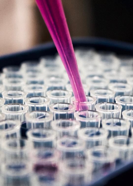 Bringing European medical technology to the MENA region