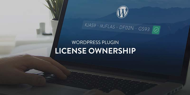Licensing integration (API) on WordPress