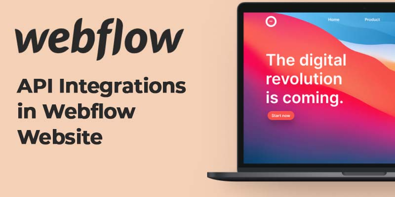 API Integrations in Webflow Site